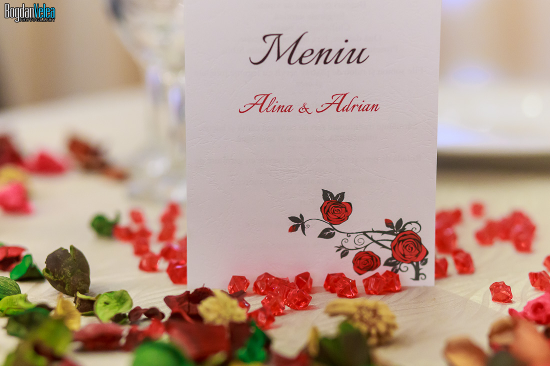 Nunta-Alina-si-Adrian-169